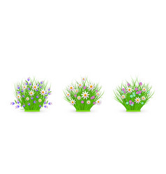 Spring and summer floral bundles set with white vector