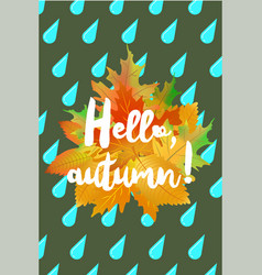 hello autumn poster with drops of rain and fallen vector image vector image