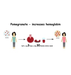 Anemia The reduced amount of red blood cells vector image