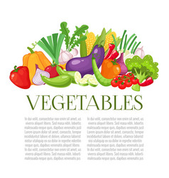 vegetables top view frame farmers market menu vector image vector image