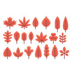 flat design autumn leaf shapes set vector image vector image