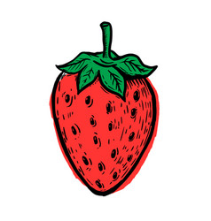 hand drawn strawberry isolated on white vector image vector image