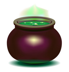 witch is a cauldron vector image