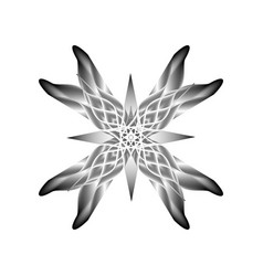 black and white flower on a white background vector image