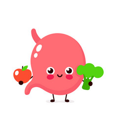 cute healthy happy stomach character vector image