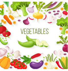 Frame of fresh vegetables for your design vector