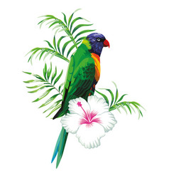 green parrot with plants vector image