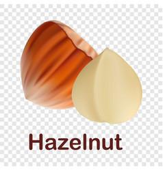 hazelnut icon realistic style vector image
