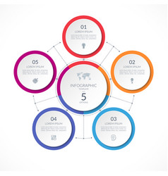 infographic circle with 5 options vector image