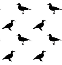 silhouette water duck on white background vector image