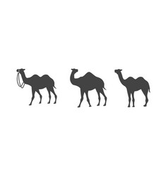 Camel icon logo template design vector