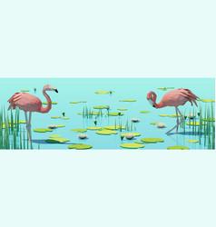 flamingos on lake among water lilies vector image