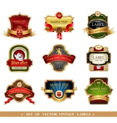 frames and ornamental labels vector image