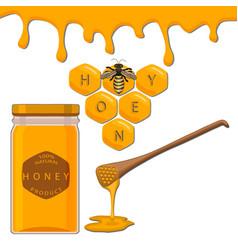 organic liquid honey vector image