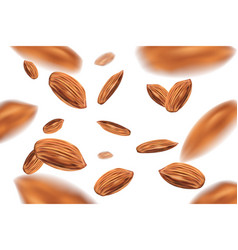 realistic falling almond nuts isolated on white vector image