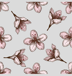 seamless pattern with hand drawn colored plum vector image