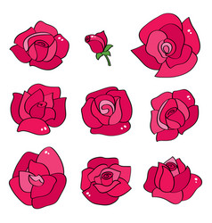 Set with line roses hand drawn flowers vector