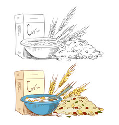 sketch porridge corn flakes and muesli isolated on vector image