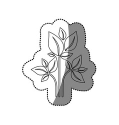 sticker silhouette of plant with branch and leafs vector image