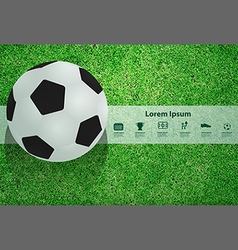 Soccer ball on the field design template vector image vector image