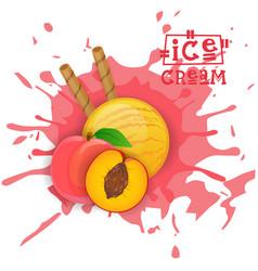 ice cream peach ball fruit dessert choose your vector image vector image