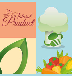 food kitchen natural product poster vector image