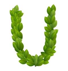 Letter U of green leaves alphabet vector image vector image