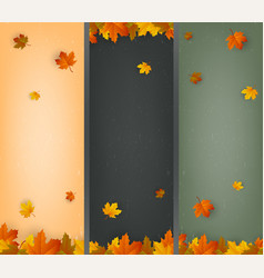 autumn background collection falling leaves vector image