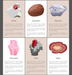 garnet carnelian diamond pink quartz ruby agate vector image
