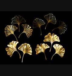 ginkgo biloba gold leaves set vector image