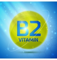 Vitamin B2 icon vector image