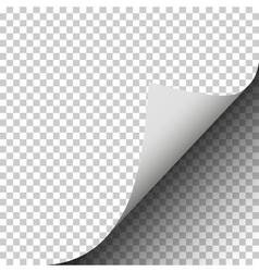 Page curl with shadow of a blank sheet of paper pl vector image vector image