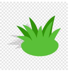 shrub isometric icon vector image