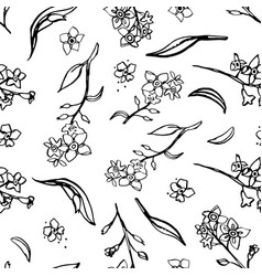 Botany forget me not pattern line art vector