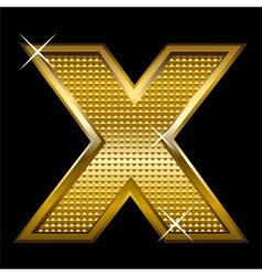 Golden font type letter X vector image