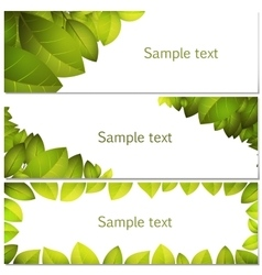 Green leaves banners set vector