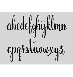 Handwritten brush style calligraphy cursive font vector image
