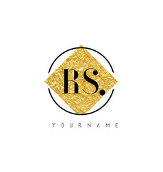 rs letter logo with golden foil texture vector image