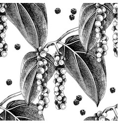 seamless pattern with hand drawn pepper plant vector image