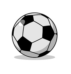 Soccer ball isolated Sports accessories for vector image