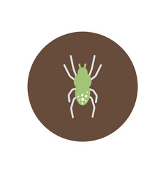 Stylish icon in color circle spider insect vector