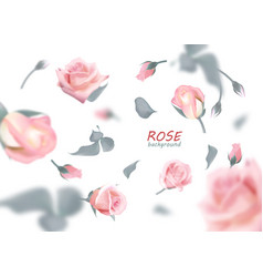 the buds of gently pink roses are flying in a vector image