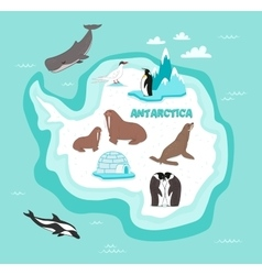 Antarctic continent map with wildlife animals vector image vector image