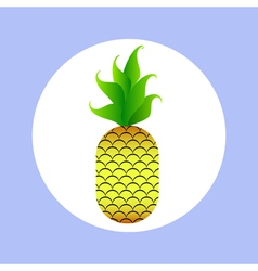 pineapple in circle vector image vector image