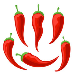 chili pepper icons set vector image