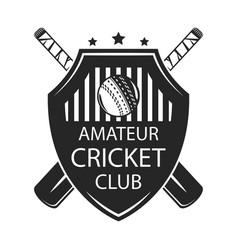 cricket amater club vector image