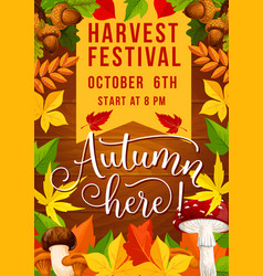 Fall festival and autumn harvest fest invitation vector
