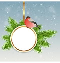 Green fir branch and bullfinch vector image