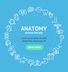 human organs signs round design template line icon vector image
