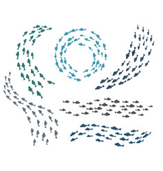 Small fish groups vector